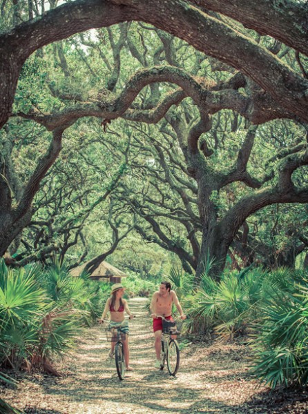 Cumberland Island Bike Trails